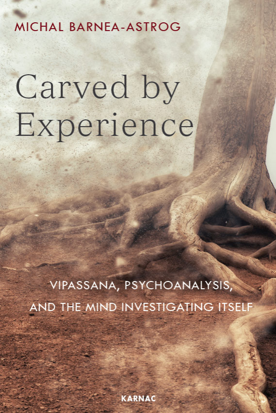 Carved by Experience book cover